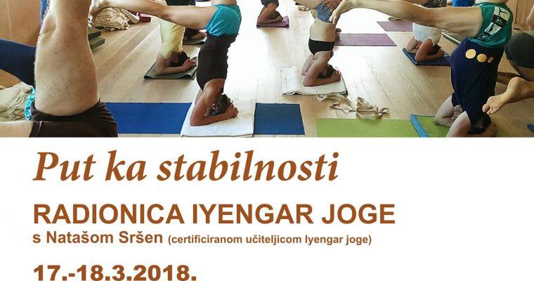 WORKING TOWARDS STABILITY-iyengar yoga workshop with Natasha Srshen in Zagreb